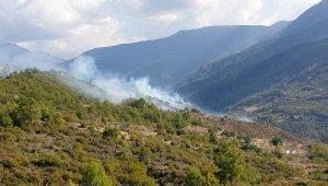 Özel ağaçlandırma sahasında yangın çıktı