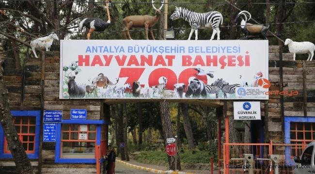 Hayvanat Bahçesi ziyarete kapatıldı, sosyal tesisler faaliyetlerine ara verdi