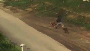 Antalya'da sokak ortasında vicdanları sızlatan görüntüler