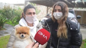 """Kızını ısıran köpeği ezdiği öne sürülen anne: """"Köpeği kasıtlı ezmedim"""""""