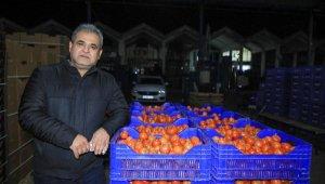 Sebze ve meyvenin fiyatlarında' korsan komisyoncu' etkisi