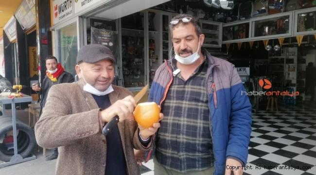 Tanesi 1 kilogramı geçen portakallar ne kadara satılıyor ?