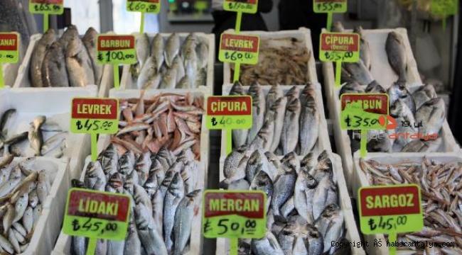 'Vatandaşlar ucuz balık beklemesin'