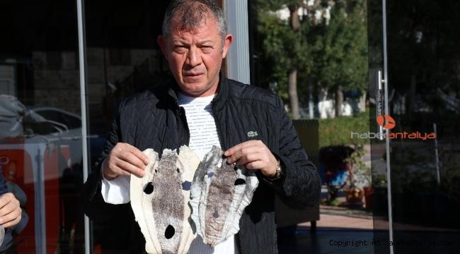 Balıkçıları canından bezdiren balon balığı derisi ayakkabı, cüzdan, çanta olacak