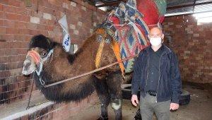Güreş devesi sahipleri: Seyircisiz de olsa yılda bir kez güreşler yapılsın