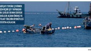 Dünya Doğayı Koruma Vakfı'ndan Akdeniz uyarısı !