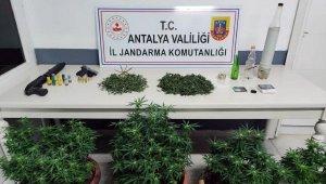 Manavgat'ta uyuşturucu operasyonları son sürat devam ediyor