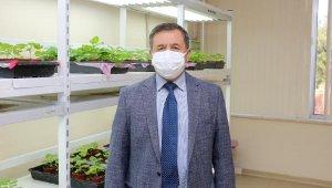 Akdeniz Üniversitesi'nde koronavirüse karşı ilaç ve aşı adayı geliştirildi !
