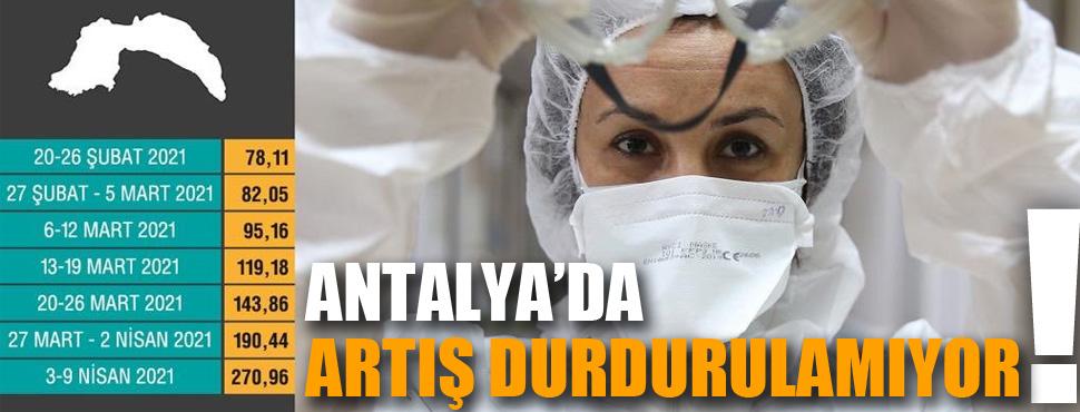 Antalya'da artış durdurulamıyor !