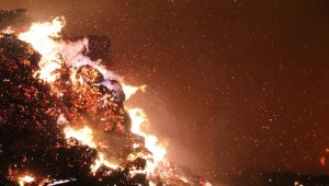 Biyokütle enerji tesisindeki yangının hasarı 6 milyon lira !