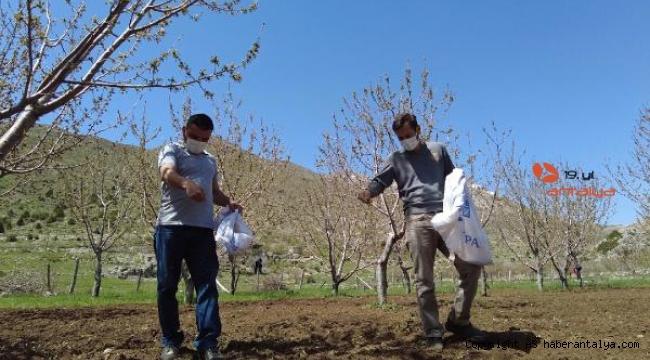 Büyükşehir'den bal üreticilerine destek