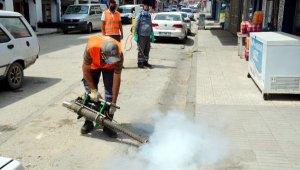 Serik'te sinek ve haşere mücadelesi