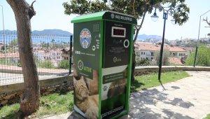 Sokak hayvanları için mamamatik hizmeti