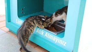 Sokak hayvanları için özel mamamatik