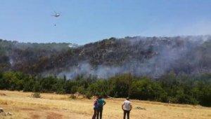 Kaş'ta orman yangını hektarlarca alan zarar gördü