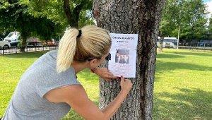 Kayıp köpeğini bulana 10 bin TL ödül verecek