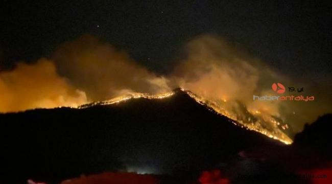 Isparta orman yangını 2'nci gününde; Yeşil örtü tamamen yandı