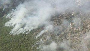 Köyceğiz'deki yangında 7'nci gün. İşte son durum