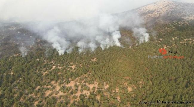 Muğla Kavaklıdere'deki yangını; Alevler Menteşe'ye ilerliyor !