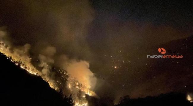 Muratpaşa ekipleri cansiperhane yangın yerinde