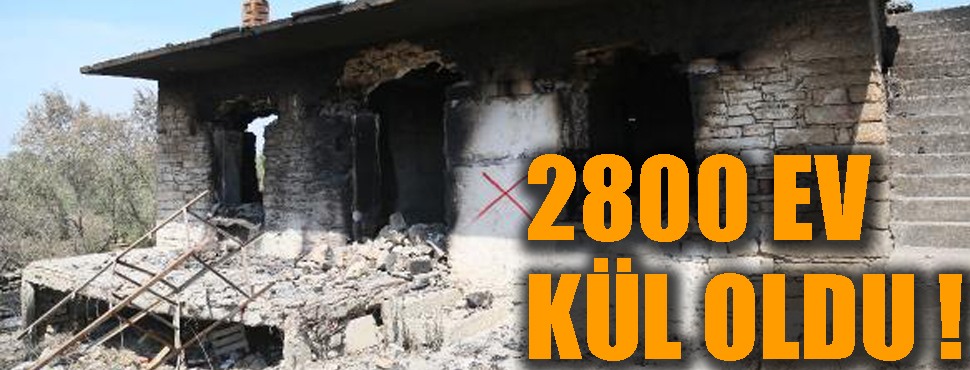 Yangında 2800 ev kül oldu, sayı daha da artacak !
