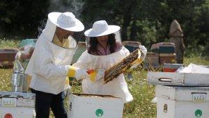 Arıcılara uzanan yardım eli umut oluyor