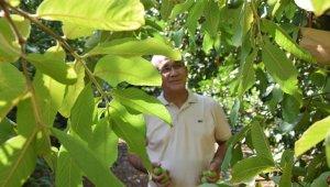 Emekli okul müdürü ekvatoru Antalya'ya getirdi