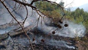 Kaş'ta orman yangını korkuttu !