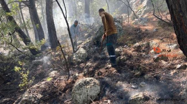 Kemer'de orman yangını korkuttu