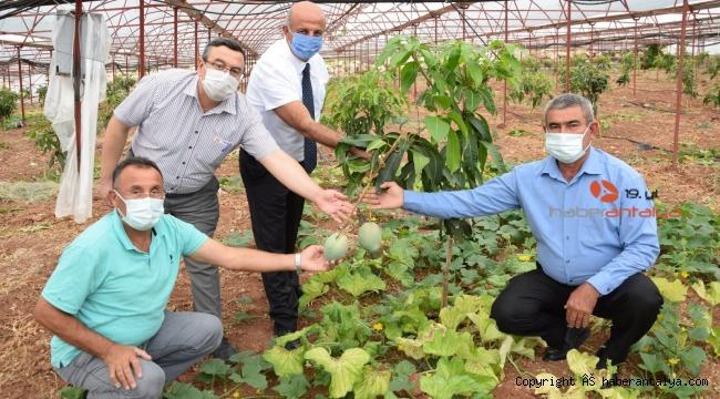Maliyet artışı çiftçiye 'değişimi' zorunlu kıldı