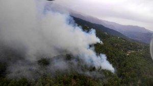 Manavgat'ta bir orman yangını daha !