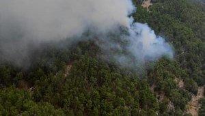 Manavgat'ta orman yangını; 5 saatte kontrol altına alınabildi !