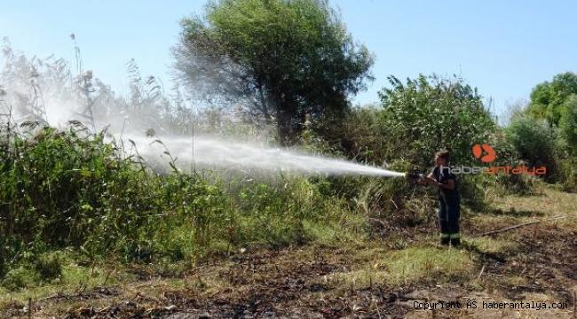 Sazlık alanda çıkan yangın, güçlükle kontrol altına alındı