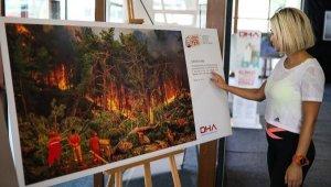 'Yangın Yeri' sergisinde 3 günde 5 bin fidan dağıtıldı