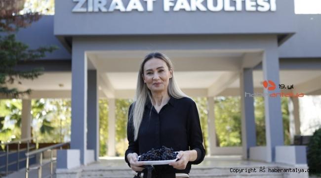Antalya'nın 'süper meyvesi' Aronya, pandeminin gözdesi