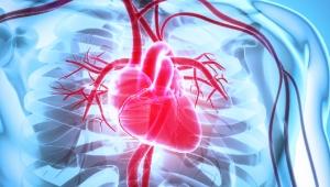 Covid-19, damar tıkanıklığından ölüm riskini artırıyor