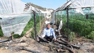 Kumluca'da dev seranın plastik örtüsü yandı