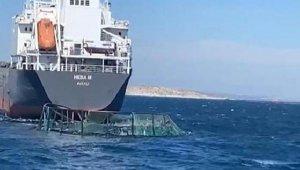 Kuru yük 20 milyon lira zarara neden oldu