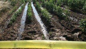 Manavgat'ta 68 bin dekar alana kapalı devre sulama sistemi kurulacak