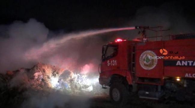 Manavgat'ta sazlık yangını korkuttu