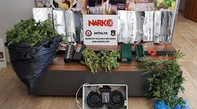 Antalya'da esrar maddesi ve hint keneviri ele geçirildi