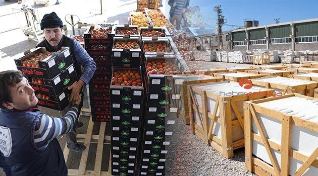 İhracatın ana ürünü mermer ve domates