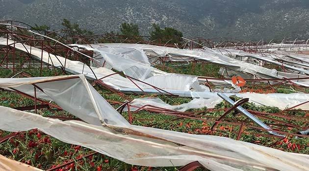 Fırtına ve dolu tarım alanlarını vurdu