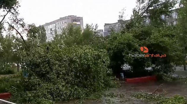 Kasırga, ağaçları köklerinden söktü!