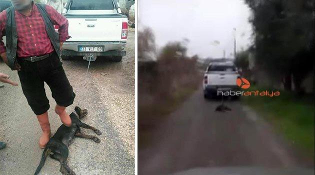 Köpeği aracın arkasına bağlayıp sürükledi!
