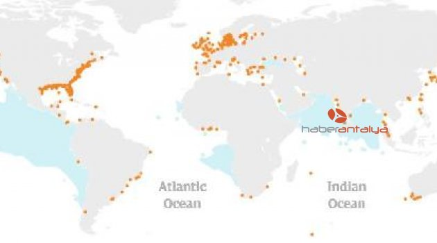 'Okyanuslar 1950'den bu yana 77 milyar ton oksijen yitirdi'