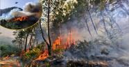 103 orman yangınının faili meçhul