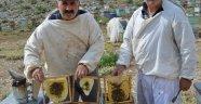 Akseki'nin meşhur Çimi Yaylası balı iklim kurbanı oldu