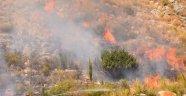Antalya'da dağlık alanda yangın