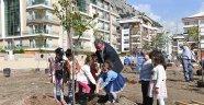 Başkan Böcek, minik öğrencilerle Turunç dikti